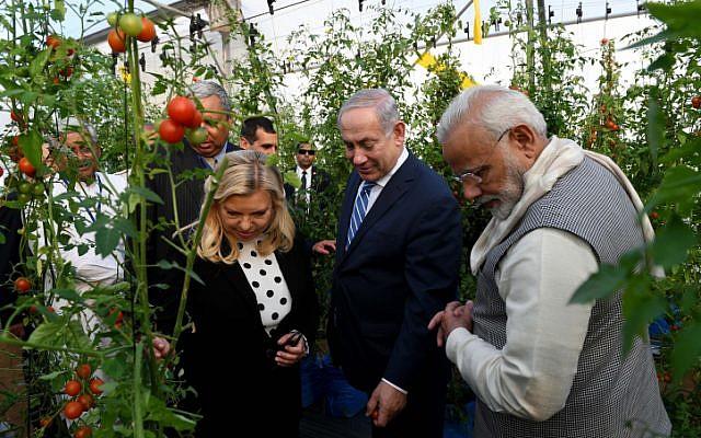Prime Minister Benjamin Netanyahu and his wife Sara tour the green houses in Gujarat, India, along with Indian Prime Minister Nrenda Modi, on January 17, 2018. (Avi Ohayon/GPO)