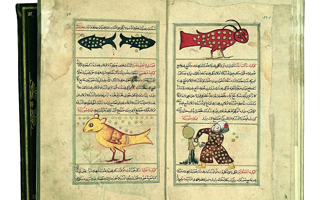 'Marvels of Things Created and Miraculous Aspects of Things Existing,' 'Aquarius and Capricorn; Pisces and Cetus,' Iraq, 1659 (The National Library of Israel)