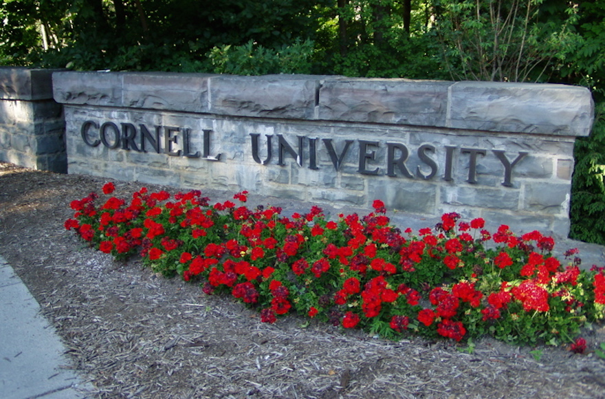 Cornell frat punished for