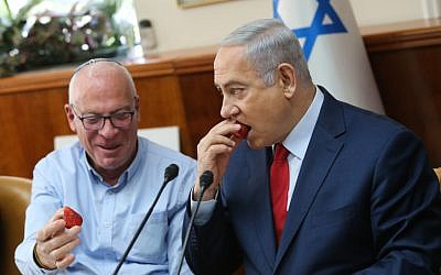 Prime Minister Benjamin Netanyahu (right) with Agriculture Minister Uri Ariel during a cabinet meeting at the Prime Minister's Office in Jerusalem on January 28, 2018. (Alex Kolomoisky/POOL)