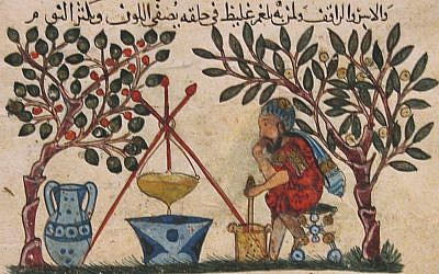 'De materia medica' by Dioscorides. Physician preparing an elixir. (The Metropolitan Museum of Art, Rogers Fund)