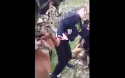 Hamzeh Abu Hashem being bitten (YouTube screenshot)