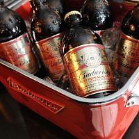 Budweiser beer bottles. (Craig Barritt/Getty Images for New York/via JTA)