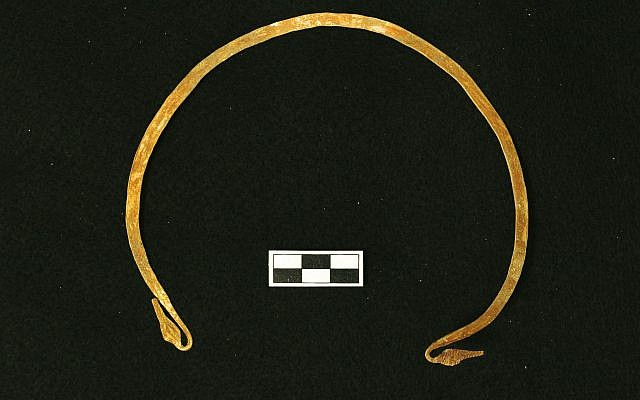 Gold torque necklace worn by an adult male buried inside the Canaanite tomb discovered at Megiddo. (Adam Prins)