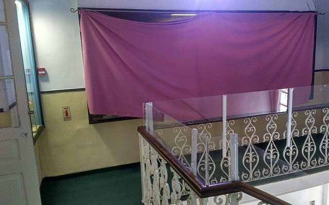 An exhibit on evolution at the Natural History Museum in Jerusalem, blocked from view with a pink sheet, in April 2018. (Michael Bachner/Times of Israel)