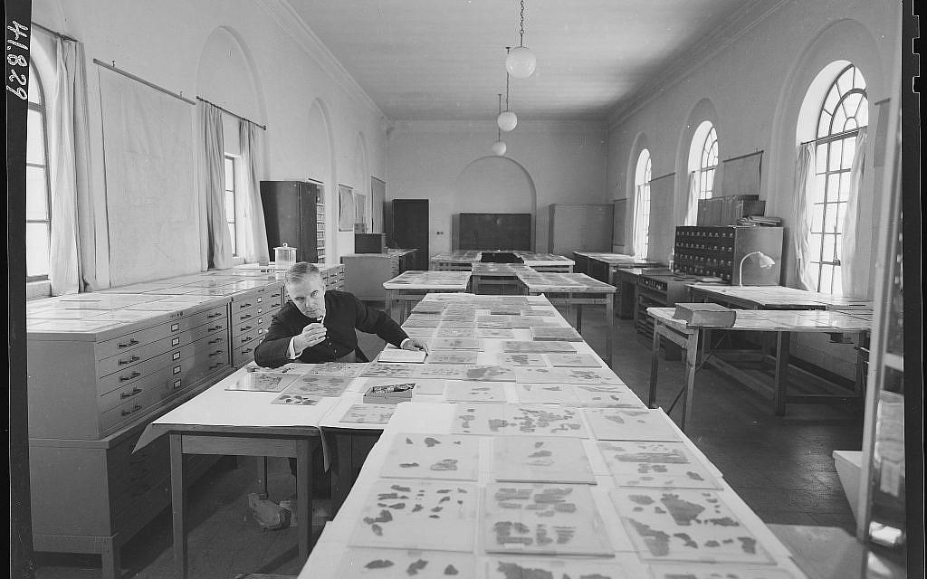 Early research on the Dead Sea Scrolls, at the Rockefeller Museum, in east Jerusalem. (Courtesy of the Dead Sea Scrolls Lab, IAA)
