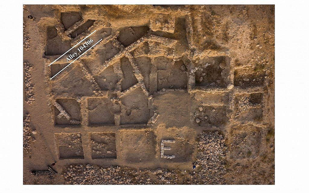 Vertical aerial view of Area E at the excavations of biblical Gath (modern Tell es-Safi), where the donkey was found in an Early Bronze Age neighborhood (Skyview Inc.)