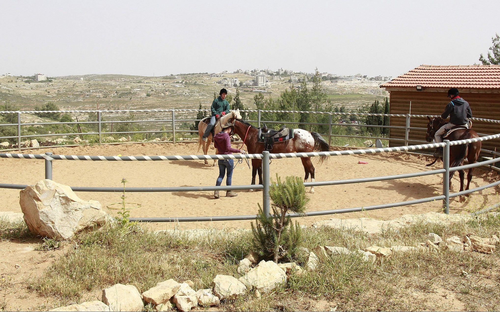 A horse stable located on private Palestinian land seized by the state for security purposes in the West Bank settlement of Beit El. (Jacob Magid/Times of Israel)