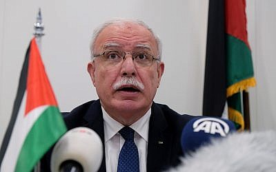 Palestinian Foreign Minister Riad Malki speaks during a press conference at the International Criminal Court