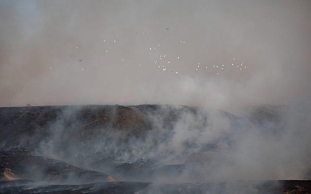 Hundreds of turkeys choke to death on smoke as fires rage near Gaza border