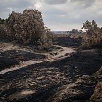 View of burnt land at the Besor Stream in Tel Gama, near the border with the Gaza Strip, on June 28, 2018. (Hadas Parush/Flash90)