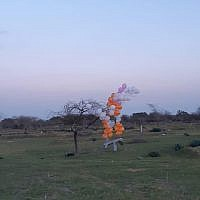A cluster of balloons carrying what appears to be a cardboard model of a drone that was launched from the Gaza Strip touches down in southern Israel on February 20, 2019. (Eshkol Security)