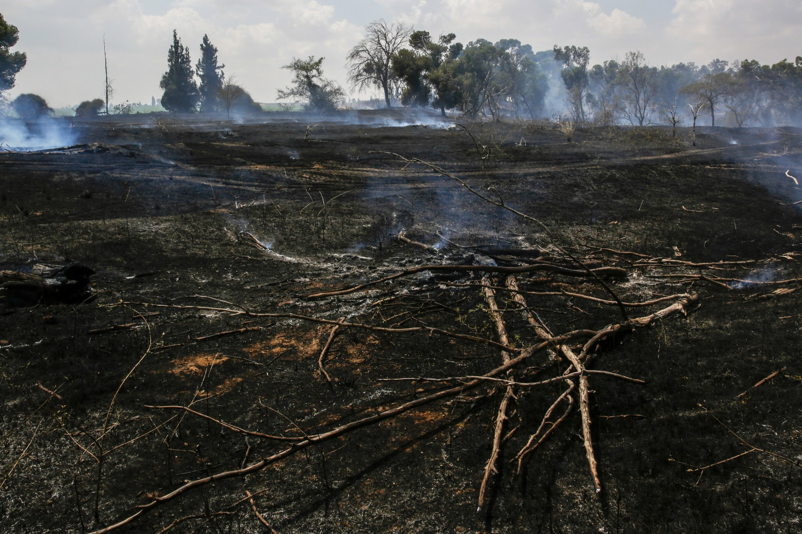 Land in southern Israel near the Gaza border burnt by incendiary kites sent from Gaza