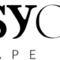 Psy-Group logo