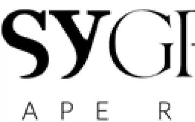 Psy-Group logo