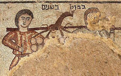 A mosaic found in the 2018 Huqoq excavation is labeled 'a pole between two' and depicts a biblical scene from Numbers 13:23. The images show two spies sent by Moses to explore Canaan carrying a pole with a cluster of grapes. (Jim Haberman)