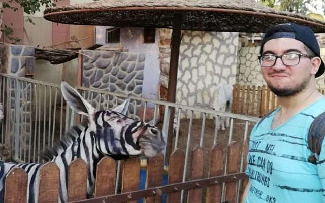 Mahmoud Sarhan with what appears to be a donkey painted to look like a zebra, at a zoo in Cairo, Egypt (Facebook photos)