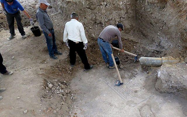 The edge of the newly exposed Lod mosaic is exposed. (Niki Davidov, IAA)