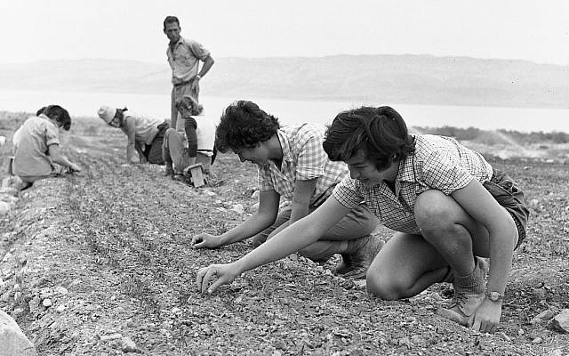 Kids at a trip to Ein Gedi and Masada, early 1950s. (Efraim Ilani)