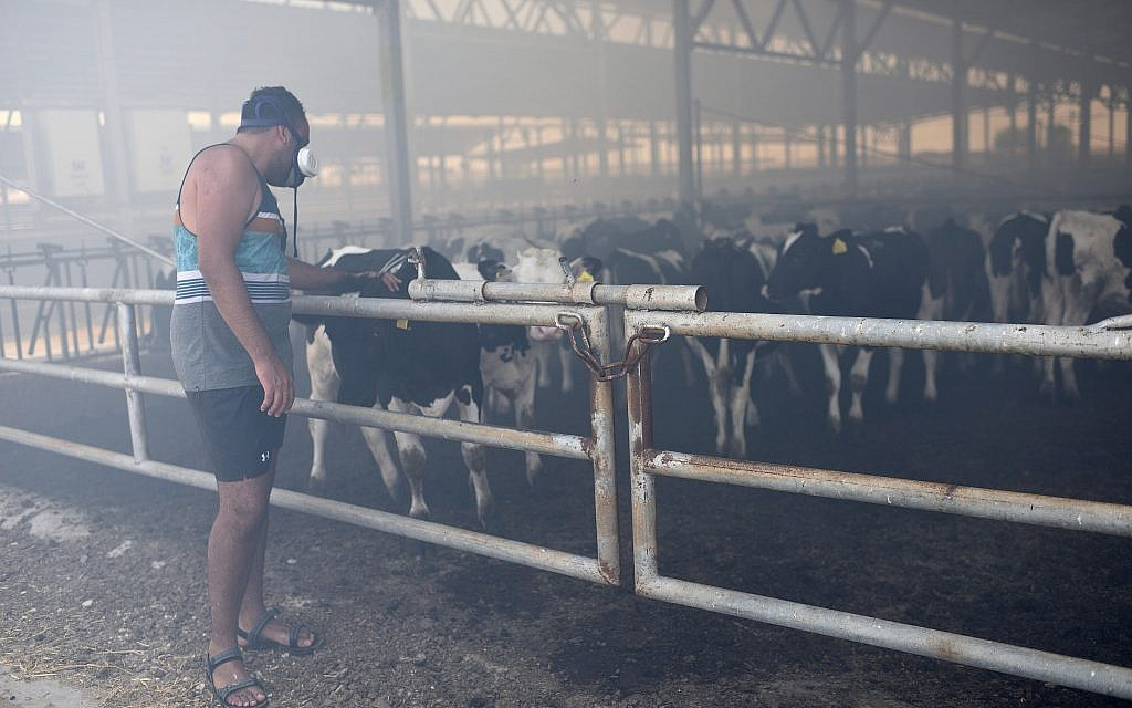 Smoke fills the cowshed at Kibbutz Nahal-Oz on Saturday as firefighters fight a blaze caused by an arson device launched from Gaza on July 21, 2018. (Gili Yaari/FLASH90)