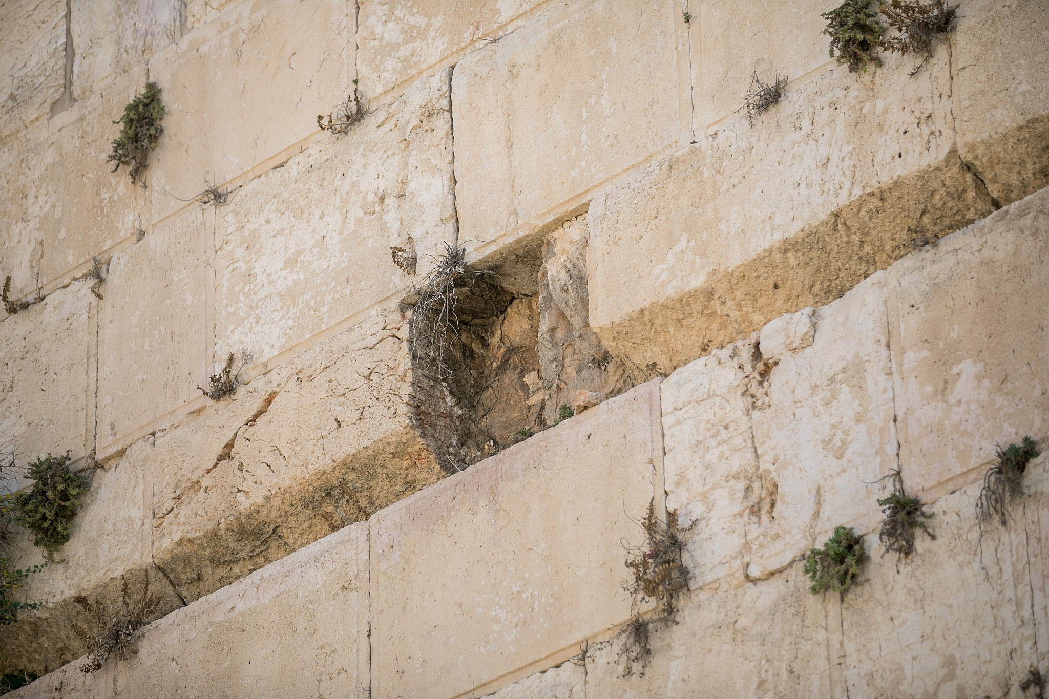 View Of The Site Where A Large Chunk Stone Dislodged From Western Wall In