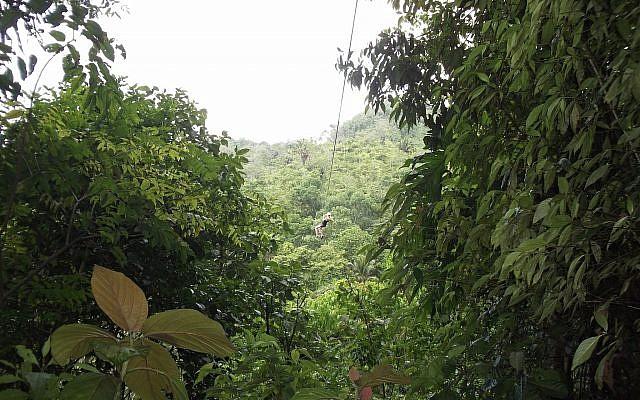 A zipline in Honduras. (Illustrative image: Wes/Pexels)