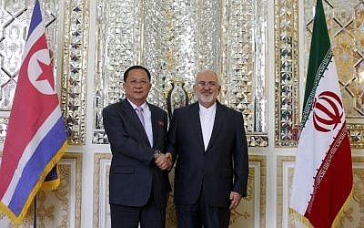 Iran's Foreign Minister Mohammad Javad Zarif (R) shakes hands with his North Korean counterpart Ri Yong Ho during their meeting in the capital Tehran on August 7, 2018. (AFP Photo/Atta Kenare)
