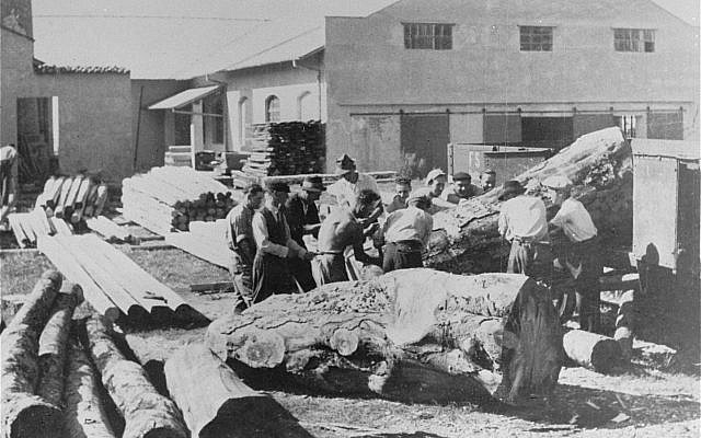 During World War II, Italian Jews at forced labor in the Italian camp at Gorizia (public domain)