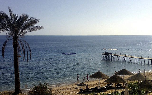 Czech tourist killed in shark attack off Egyptian coast