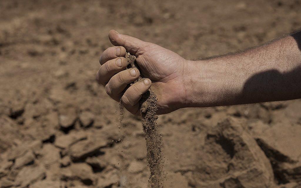 In this July 17, 2018, photo, Israeli farmer Ofer Moskovitz checks soil in his field near Kfar Yuval, Israel (AP Photo/Caron Creighton)