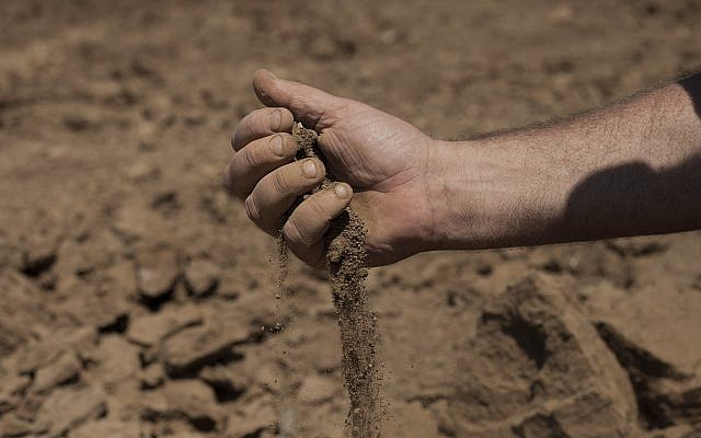 In this July 17, 2018, photo, Israeli farmer Ofer Moskovitz checks soil in his field near Kfar Yuval, Israel (AP Photo/Caron Creighton)