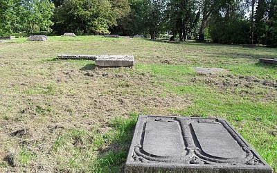 Illustrative image of Netherland's Beth Haim cemetery where headstones are normally covered by grass. (CC BY-SA Marcelmulder68, Wikimedia Commons)
