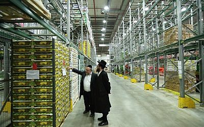 Kashrut supervisors inspect produce at a fruit and vegetable warehouse on March 20, 2016. (Yaakov Naumi/FLASH90)