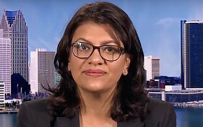 Rashida Tlaib, a Democrat from Michigan running for the US House of Representatives, is interviewed by Democracy Now! on August 16, 2018. (Screen capture: YouTube)
