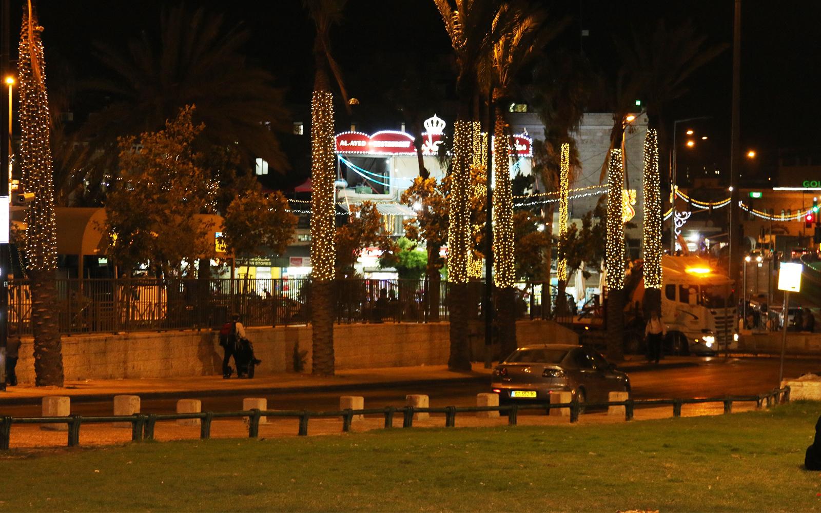 Lights festoon palm trees across from Palms' Plaza. (Shmuel Bar-Am)