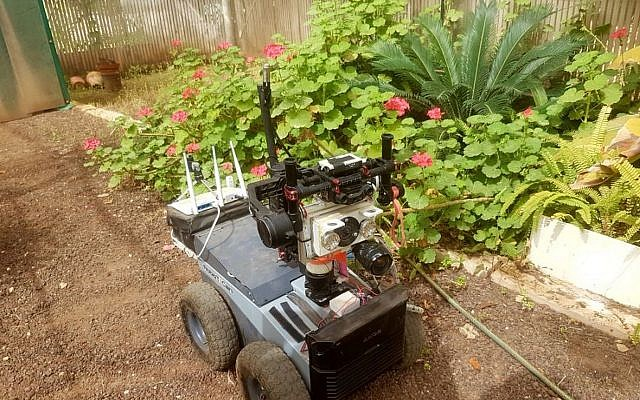 Tel Aviv University researchers have developed a Robat, a fully autonomous terrestrial robot that, like a bat, emits sound and analyzes the returning echoes to recognize, map and navigate obstacles outdoors (Itamar Eliakim)