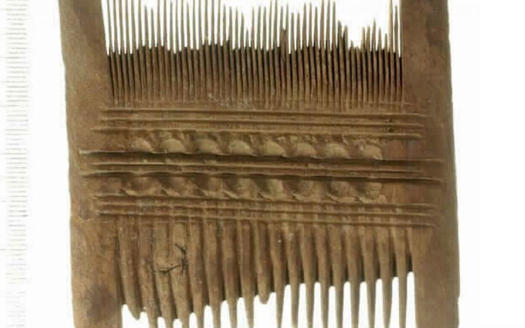 Louse comb from Ein Gedi, Roman period, made of Acacia (Clara Amit/Israel Antiquities Authority)