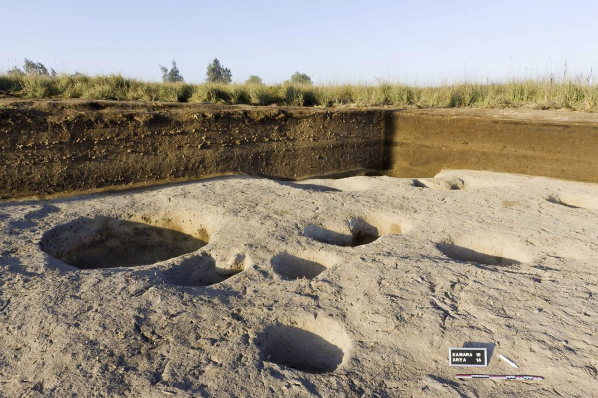 Archaeologists discover Neolithic remains in Nile Delta