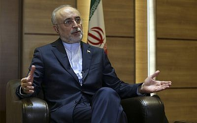 Iran's nuclear chief Ali Akbar Salehi speaks in an interview with The Associated Press at the headquarters of Iran's atomic energy agency, in Tehran, Iran, Tuesday, Sept. 11, 2018. (AP Photo/Vahid Salemi)