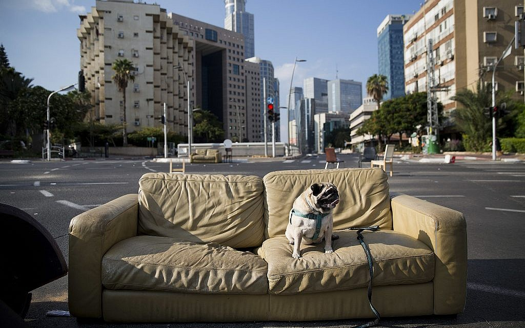 A dog sits on a sofa that has been placed on a car-free street during the Jewish holiday of Yom Kippur in Ramat Gan, Israel, Saturday, Sept. 30, 2017. Israelis are marking Yom Kippur, or 'Day of Atonement,' which is the holiest of Jewish holidays when observant Jews atone for the sins of the past year and the Israeli nation comes to almost a complete standstill. (AP Photo/Oded Balilty)