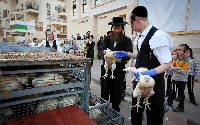 Ultra Orthodox Jews perform the kaparot ritual on September 16, 2018, in Bet Shemesh, outside of Jerusalem. (Yaakov Lederman/Flash90)