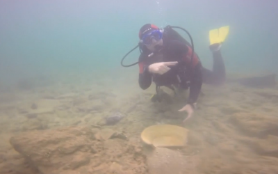 An archaeologist scours the seabed off Dor Beach in northern Israel to rescue antiquities near a 5,000-year-old port ahead of the construction of a gas pipeline for the Leviathan natural gas project, September 2018. (Screen capture of footage from the Israel Antiquities Authority)