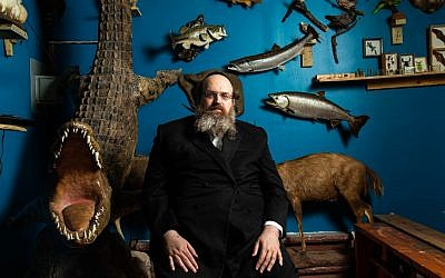 Rabbi Shaul Shimon Deutsch, founder of Torah Animal World next to the 16-foot Nile crocodile -- his favorite animal in the museum. (Micah B. Rubin/ Times of Israel)