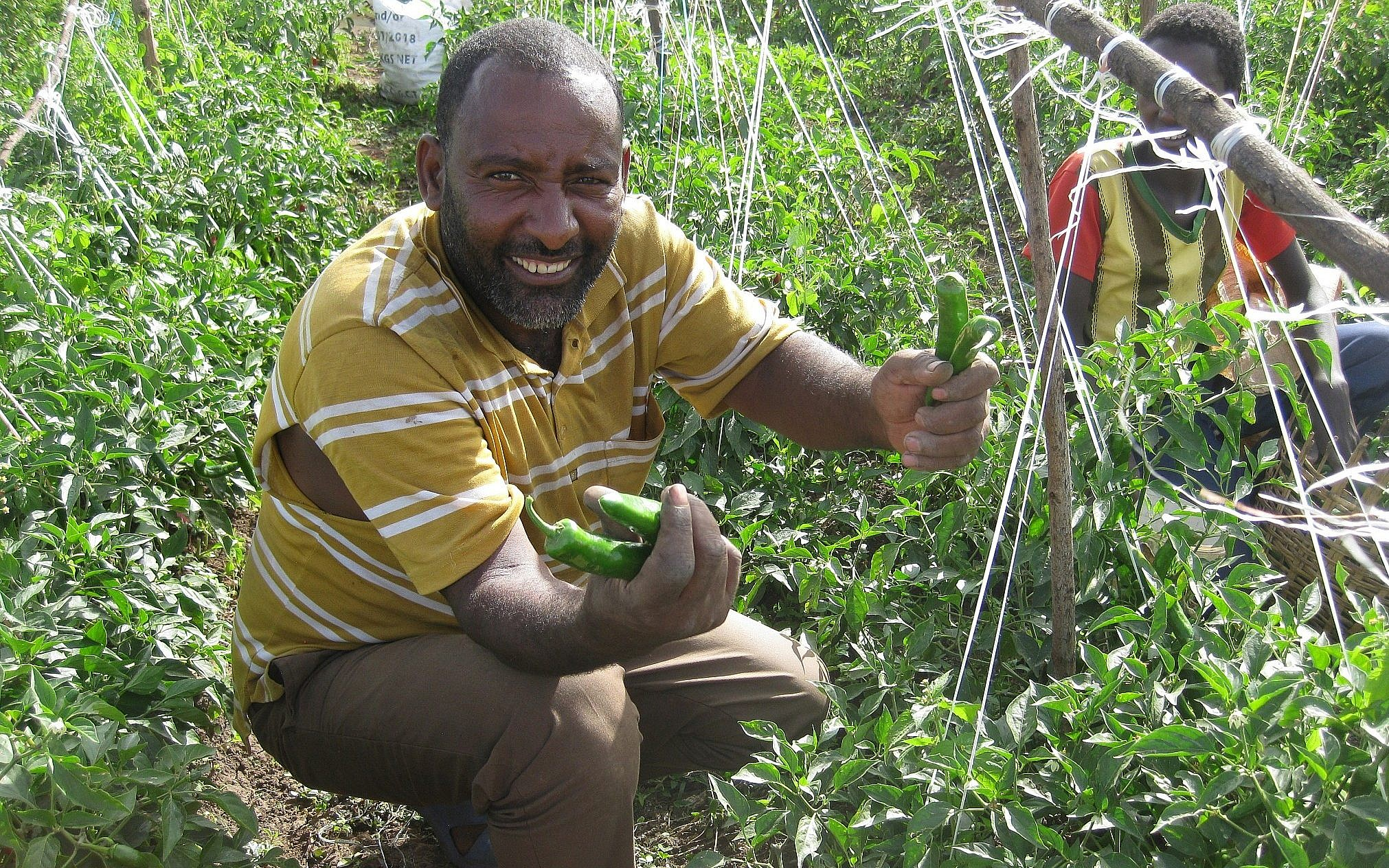 New fund utilizes Israeli tech to help small farmers in