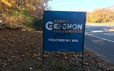A campaign sign for Democrat Perry Gershon is defaced with a swastika (Perry Gershon/Twitter)