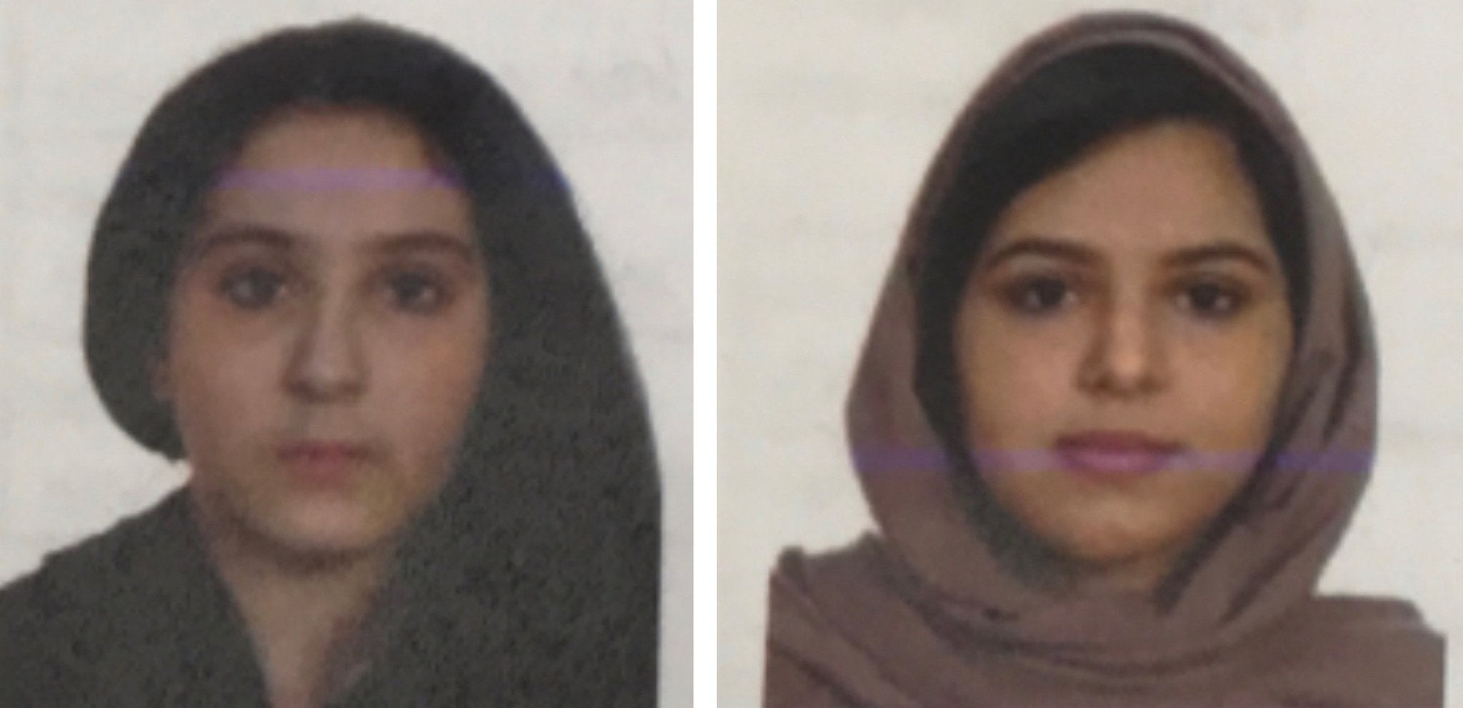 Drowned sisters - The Sisters Found Duct Taped Together In The Hudson Were