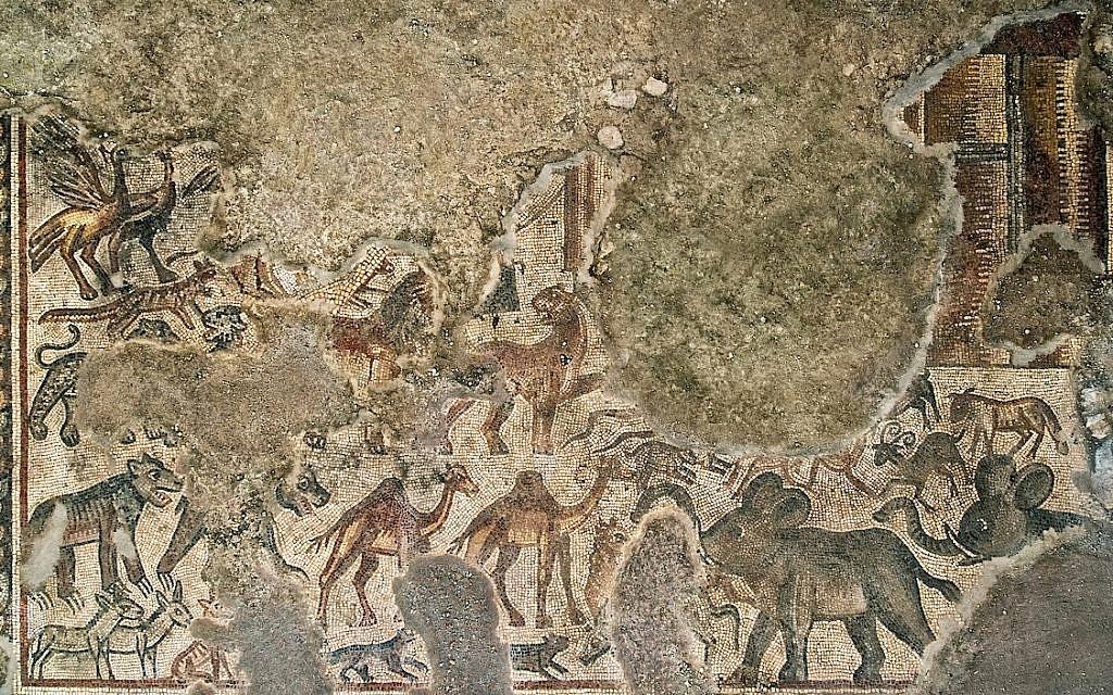 Huqoq mosaic depicting Noah's Ark (Jim Haberman)
