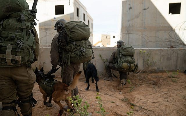 Soldiers from the Kfir Infantry Brigade, along with troops from the canine Oketz Unit, simulate war against the Hamas terror group in the Gaza Strip, in November 2018. (Israel Defense Forces)