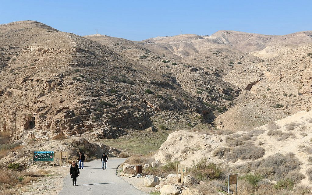 Ancient springs and stunning vistas: A desert day trip just