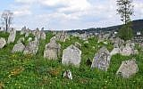 The late-16th century Buchach Jewish cemetery in western Ukraine has some 2,000 gravestones. (Courtesy/ESJF).